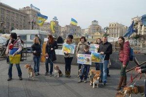 Бигли в Украине за Мир