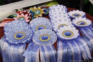 Наградные розетки на Чемпионат по породе Бигль 08.12.2012 г